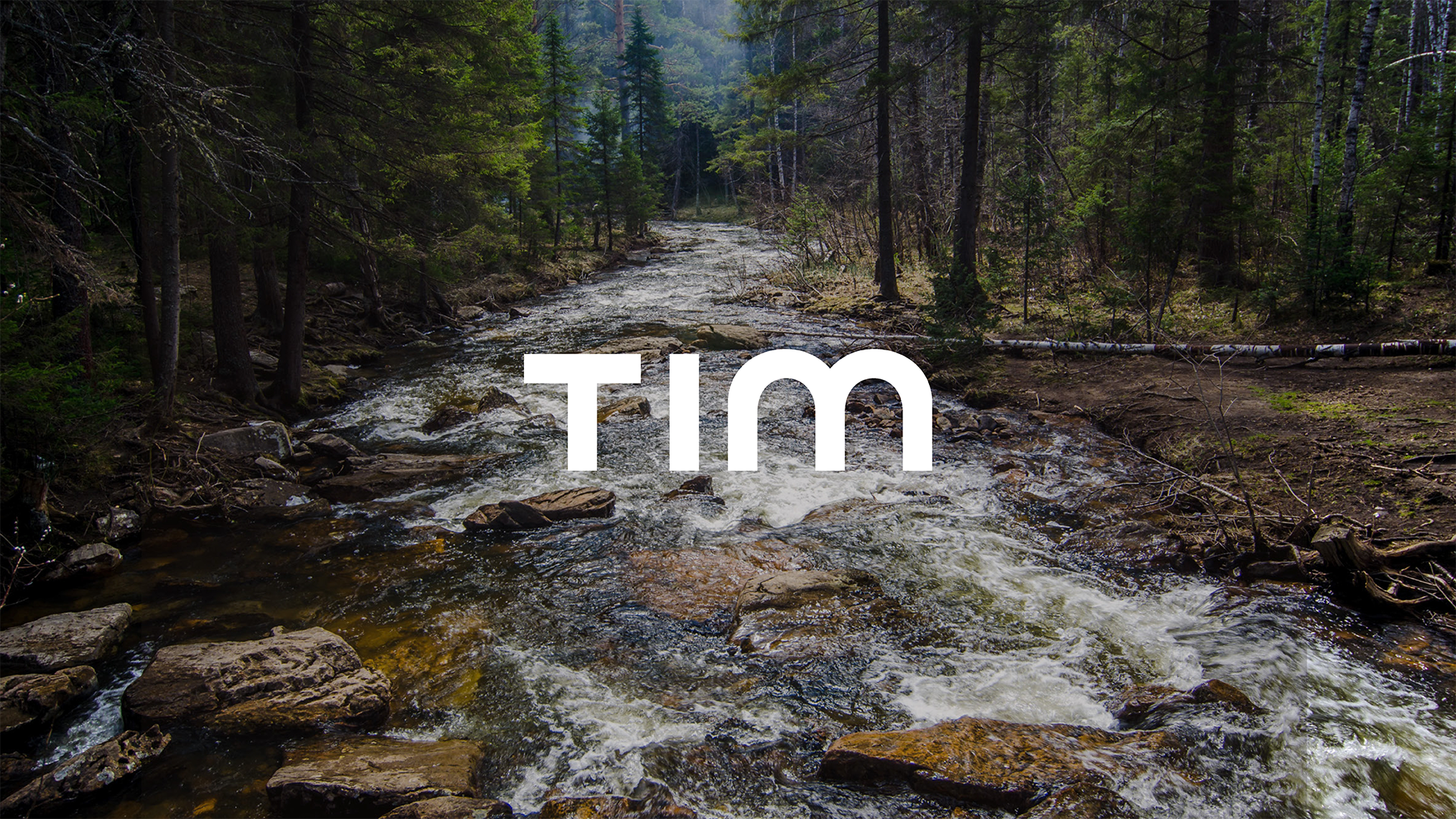 Tim_trees